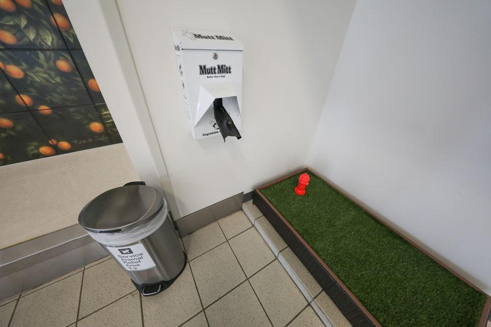 área de evacuación fisiológica para mascotas en el aeropuerto de ontario